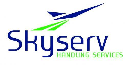 Skyserv Handling