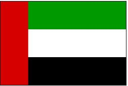 Flag-United-Arab-Emirates_3455000290